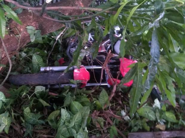 Motociclista perde controle e invade chácara (Foto: AssisNews)