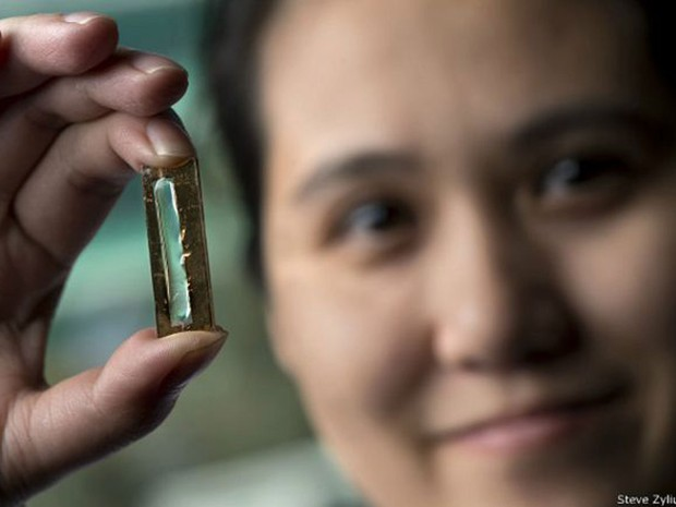 """Estudante de doutorado Mya Le Thai estava """"brincando"""" com nanocabos quando decidiu usar capa de gel (Foto: Steve Zylius/UCI)"""