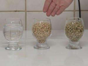 Além da jabuticaba, a receita leva água, lúpulo e malte (Foto: Reprodução / TV TEM)